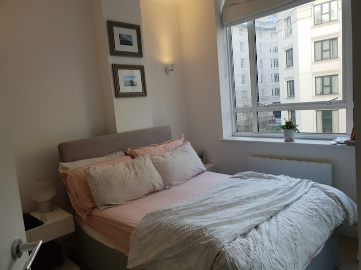 Wonderful double room ensuite 50m from London Eye!