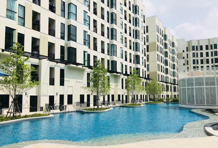 曼谷 市区 bts 泳池公寓