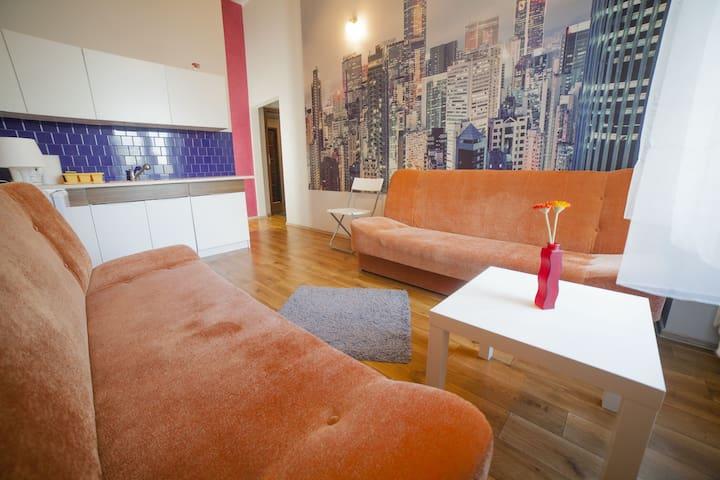 Pokoj 18m2 z mini kuchnią i łazienką, centrum - Wrocław - Apartament