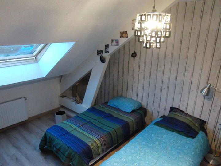Loue chambre  2 lits de 90 accolés (ou non !)
