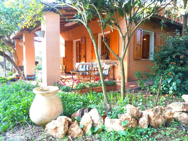 Peaceful rustic country home among olive trees - Sassari - Casa