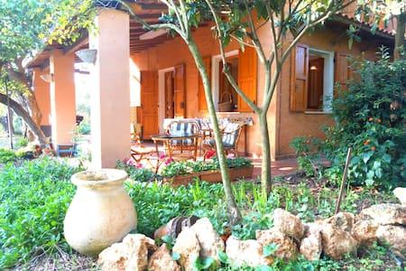 Peaceful rustic country home among olive trees - Sassari - Talo