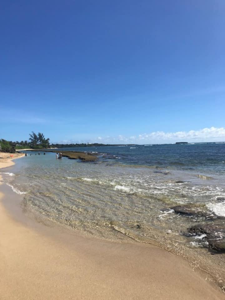 Good Times Hawaii #D2