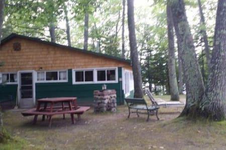 Northwoods cottage on a beautiful 1,100 acre lake
