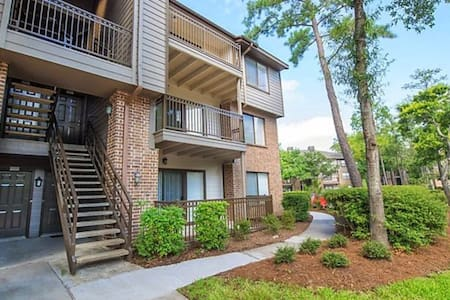 Homey 1br Apt near Waterway - The Woodlands