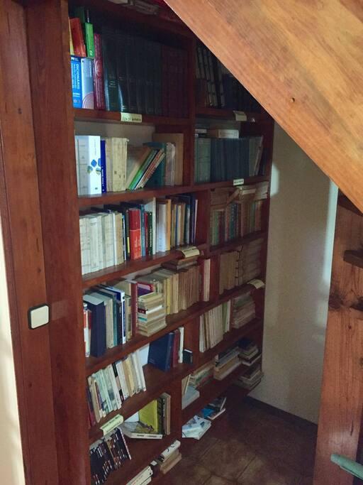 O apartamento possui uma vasta coleção de livros que podem ser consultados pelos hóspedes.