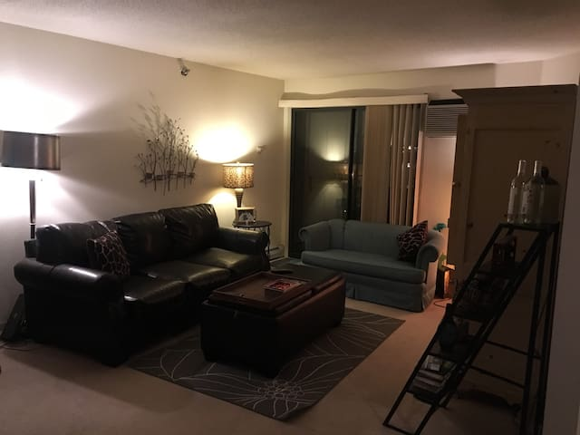 Quaint APT in Tosa Village - Wauwatosa - Apartment