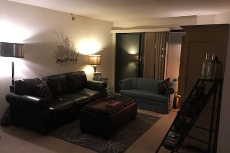 Quaint APT in Tosa Village - Wauwatosa - Pis