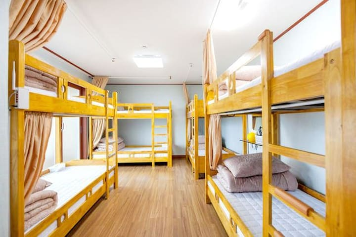 Longisland 8 bed domitory only male(남자)