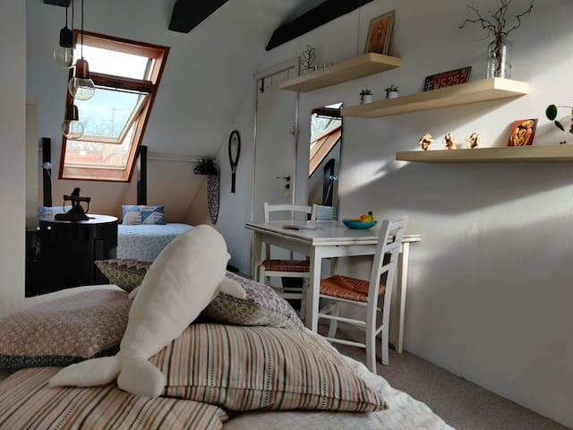 Cozy bright room with easy public transport