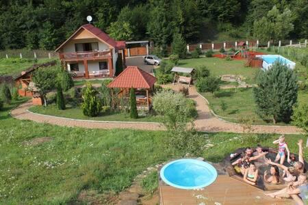 Дом с видом на горы Карпаты