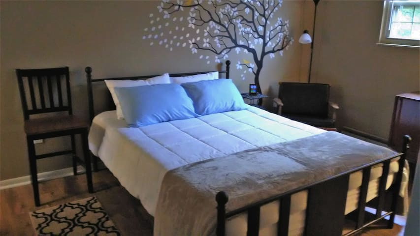 Casual bedroom with Queen size bed.