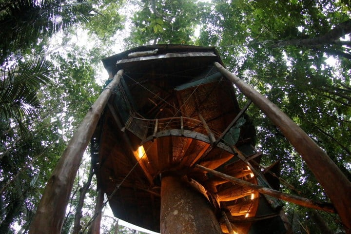 Healing Rainforest Tree House Rental near Beaches