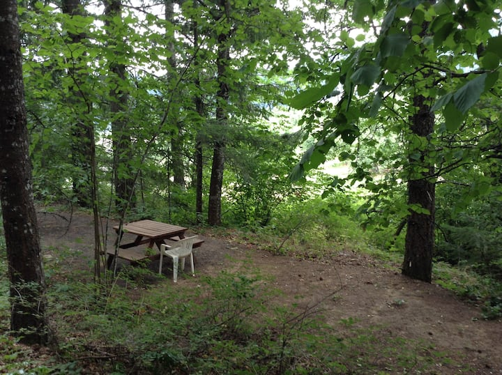 In The Woods - Camping/RV Spot #2