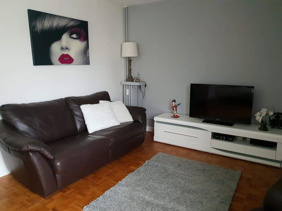 Le salon avec un canapé convertible et la télé