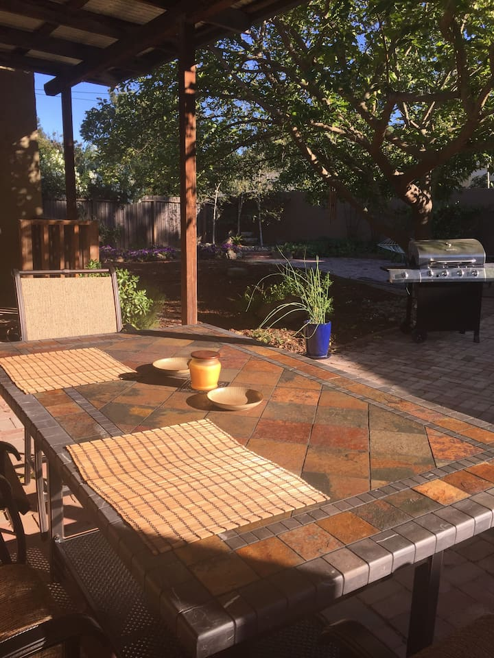 Backyard with large outdoor table