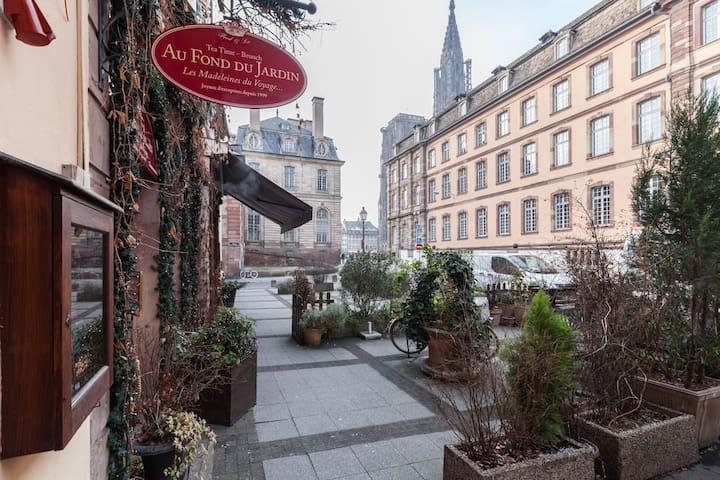 Appart avec vue sur cathédrale,heart of Strasbourg - Strasbourg - Lägenhet