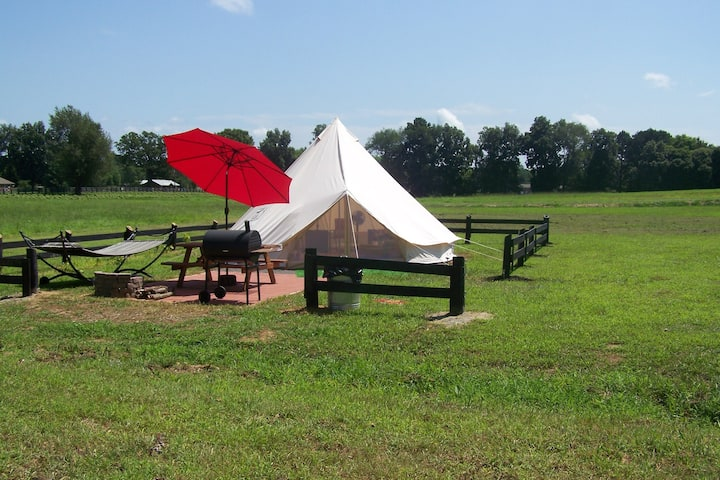 South Star Glamping Tent on Starstruck Farm!