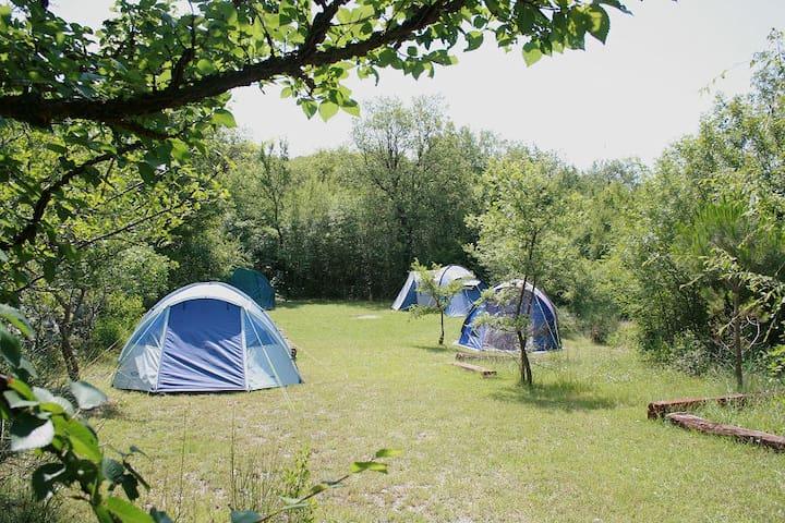 Eco Camping in Montenegro - Herceg Novi
