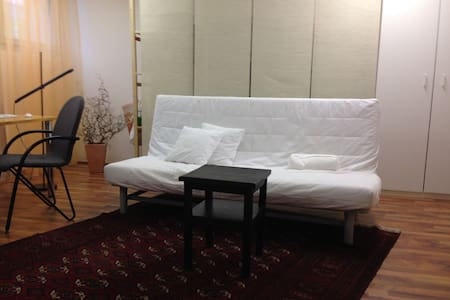 Private room with bathroom and separate Entrance - Adliswil - 公寓