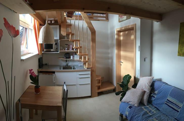 2-Zimmer-Appartment mit viel Liebe im Detail - Obereching - Apartment