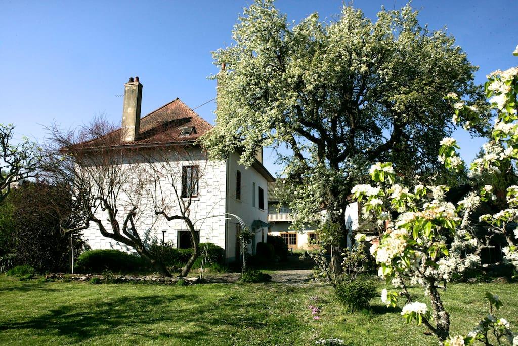 La maison du peintre maisons louer pinac bourgogne franche comt france - La maison du peintre ...