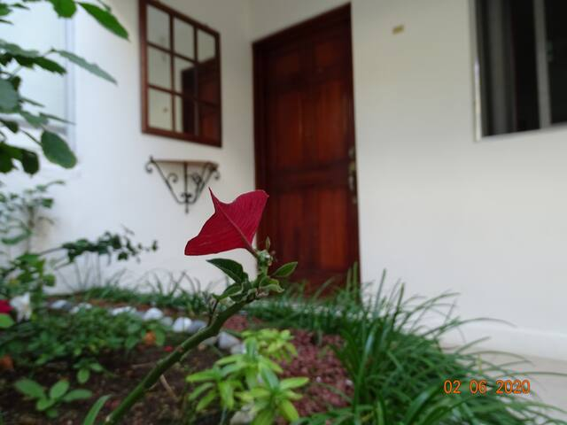 APARTAMENTO & HOTEL VILLA ESCONDIDA CAMPECHE