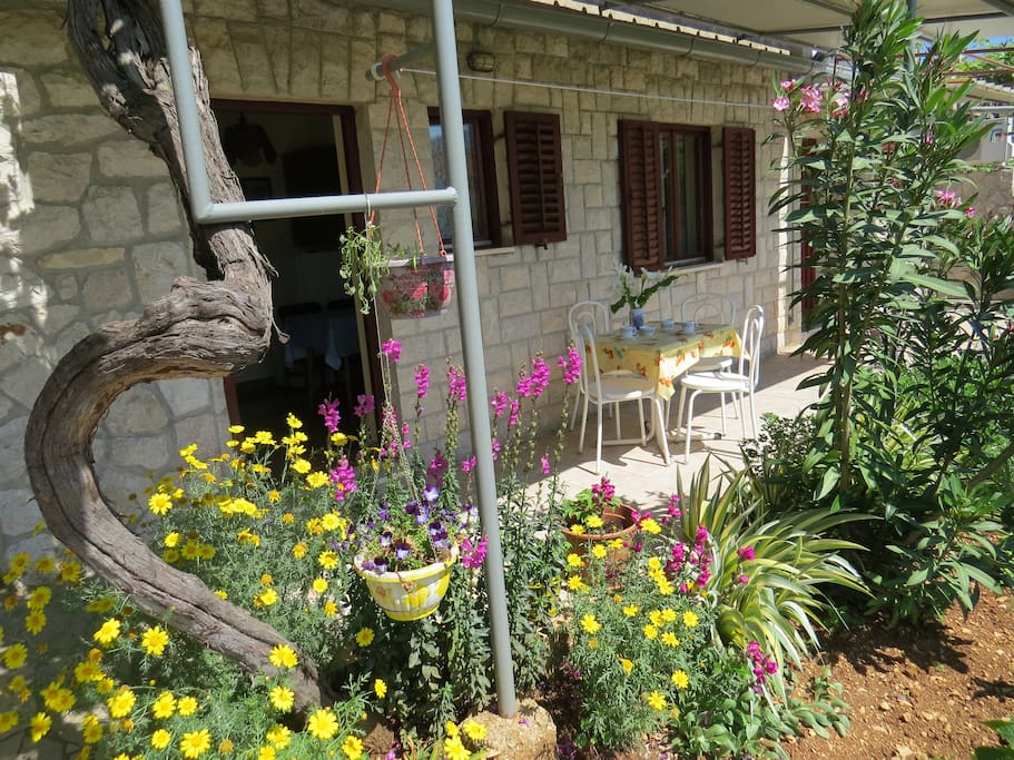 Pleasant Garden Apartment Old Town And Beaches5min Flats