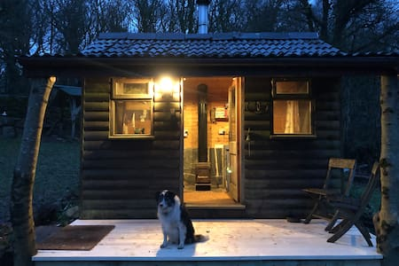 Dawn chorus, Cabin, woodland walks, cosy fire