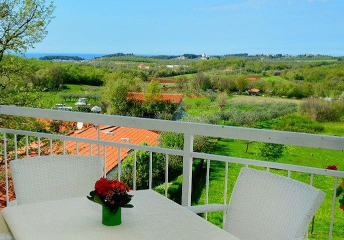 Charming home with beautiful sea view - 波雷奇(Porec) - 公寓
