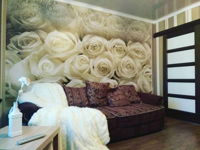 Жилье квартира для отыха,проживания вцентре Пинска