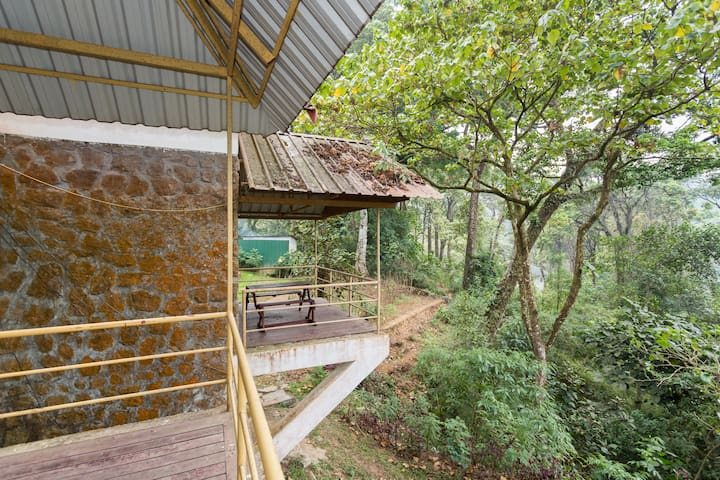 Bungalow in 30acres of Cardamom plantation - Munnar - Byt