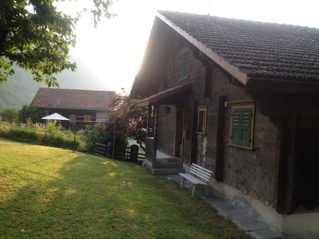 House back side