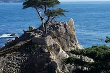 17 Mile Drive 6 miles from the house