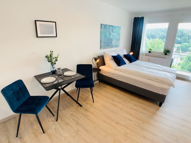 Komfortables Apartment in Bad Elster mit Netflix