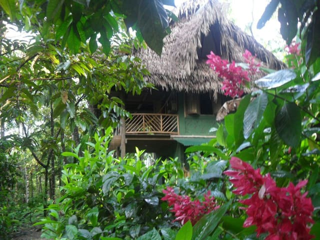 Rio Dulce Guest House