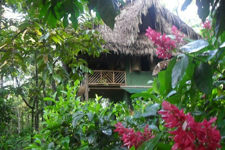 Rio Dulce Guest House