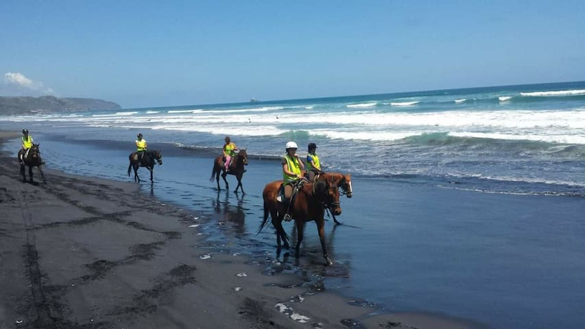 Horse riding is fun anywhere anytime and we love taking the horses to Muriwai beach