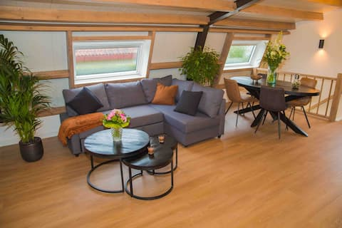 Light and spacious apartment close to Amsterdam