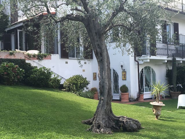 villa with pool, garden & view - rapallo - Villa