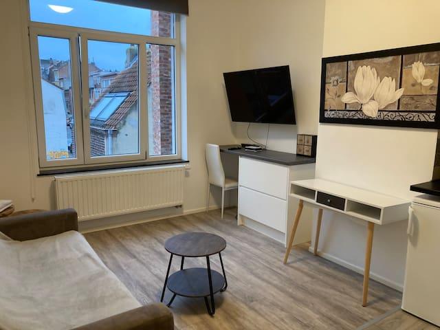 Comfortable studio in Brussels