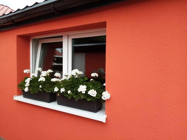 Fenster Wohnzimmer zum Garten