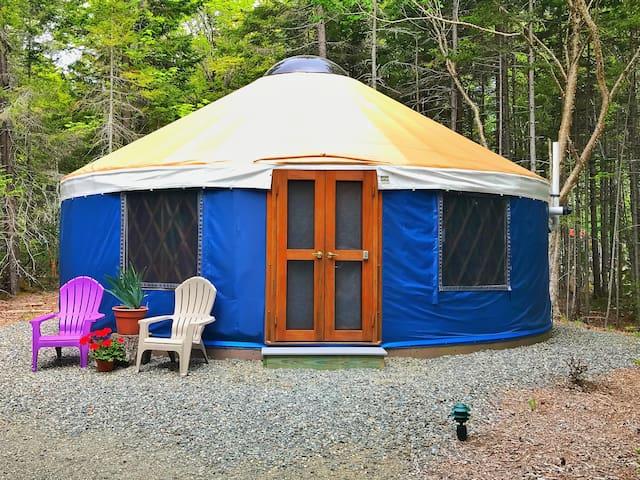 Glamping at Acadia Yurts!