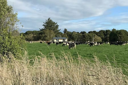 live on a farm (farm stay close to invercargill)