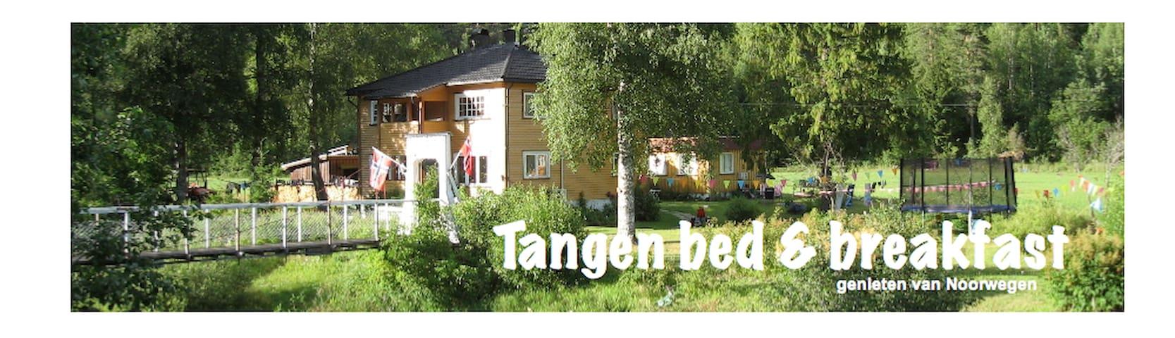 (URL HIDDEN)  Bed&breakfast / leilighet/romutleie - Drangedal - Apartment