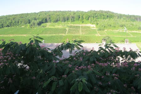 Stay in a wine-growing village - Pernand-Vergelesses