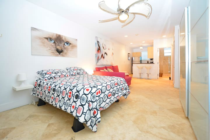 Apartments For Rent Collins Avenue Miami Beach