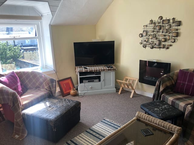 Living room, which has a put me up single also.