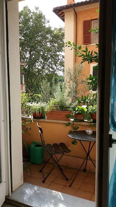 Your balcony (September 2018)