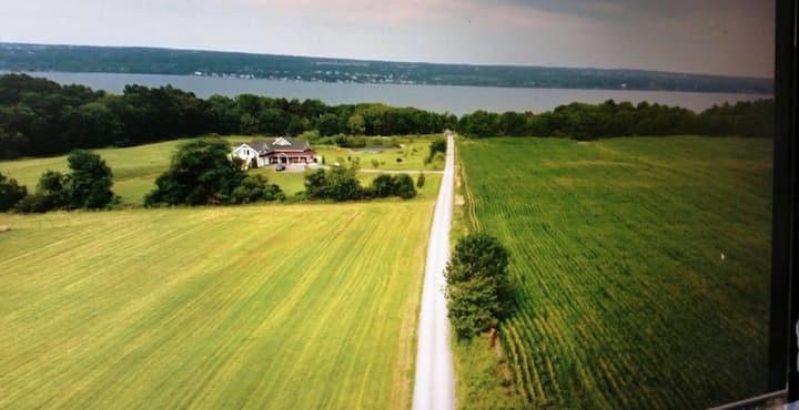 Vine To Villa  Of The Finger Lakes